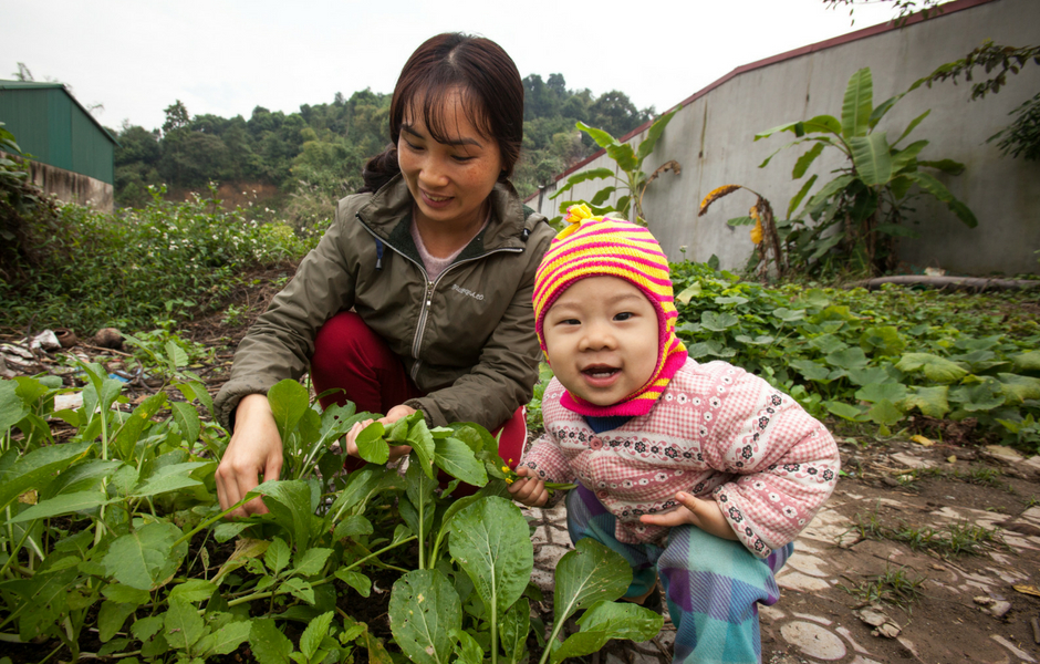 Nguyen Thi Kieu Thu picks fresh vegetables from her garden with the help of her baby boy.