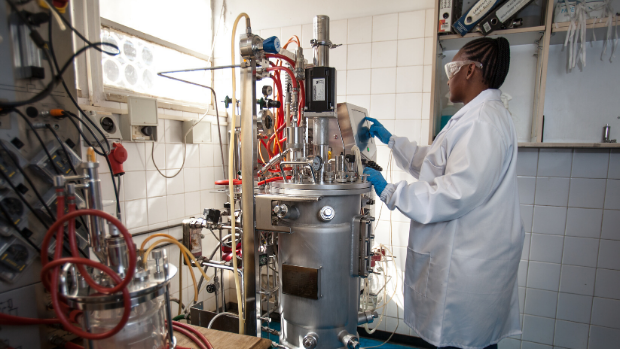 South African researcher operates a  fermenter for vaccine production in May 2019.