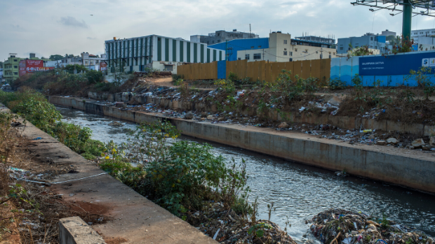 One of the polluted water stream flows within Banglore city