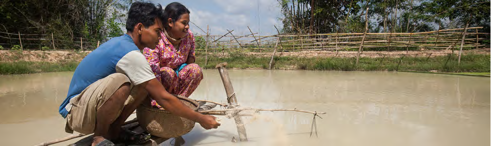Improving women 39 s lives in cambodia through fish on farms for Keller fish farms