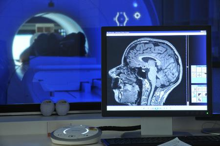 A computer displays a picture of the brain of someone undergoing a magnetic resonance imaging scan.