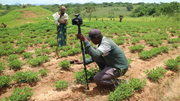 An IDRA recipient explains to farmers in Malawi how to take digital photos of crops.