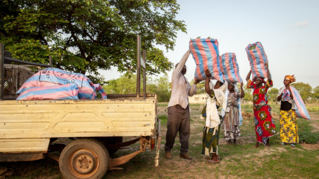 Women of the Soudomse co-op in Benin carry their fresh harvest to a truck for transportation to the market.