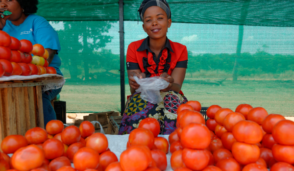 Photo of a woman selling tomatoes at a market