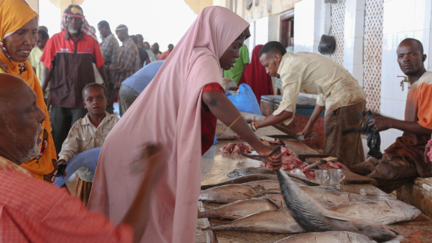 Photo of a woman handling fish in a market