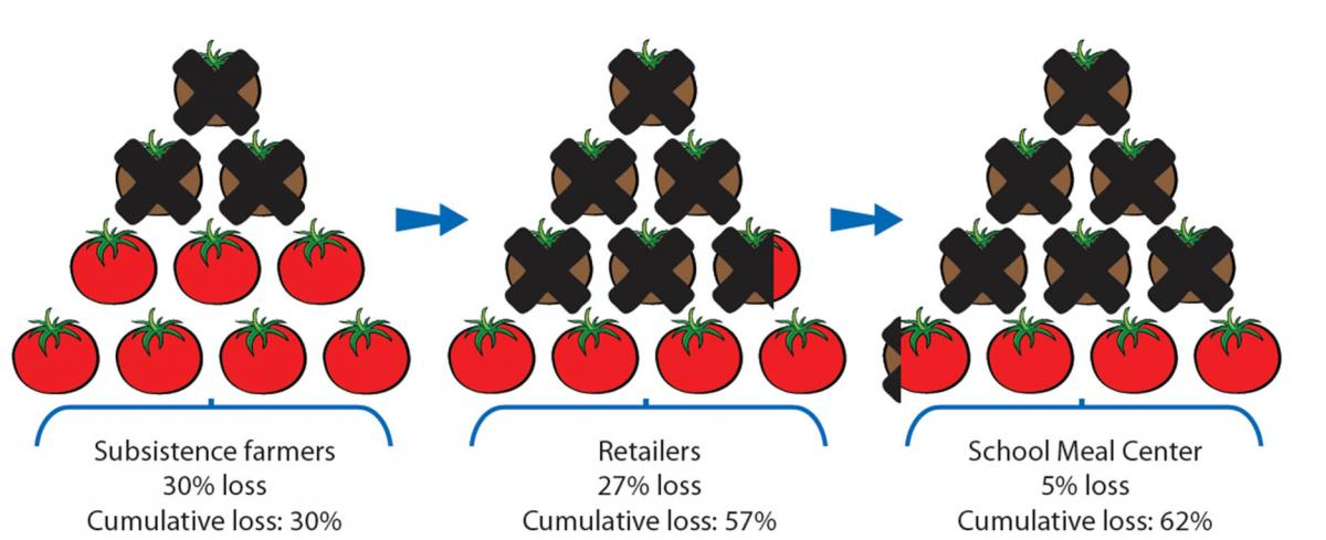 Figure 2: Cumulative loss of tomato in St Kitts-Nevis. Subsistence farmers 30% loss Cumulative loss: 30%; Retailers 27% loss Cumulative loss: 57%; School Meal Center 5% loss Cumulative loss: 62%