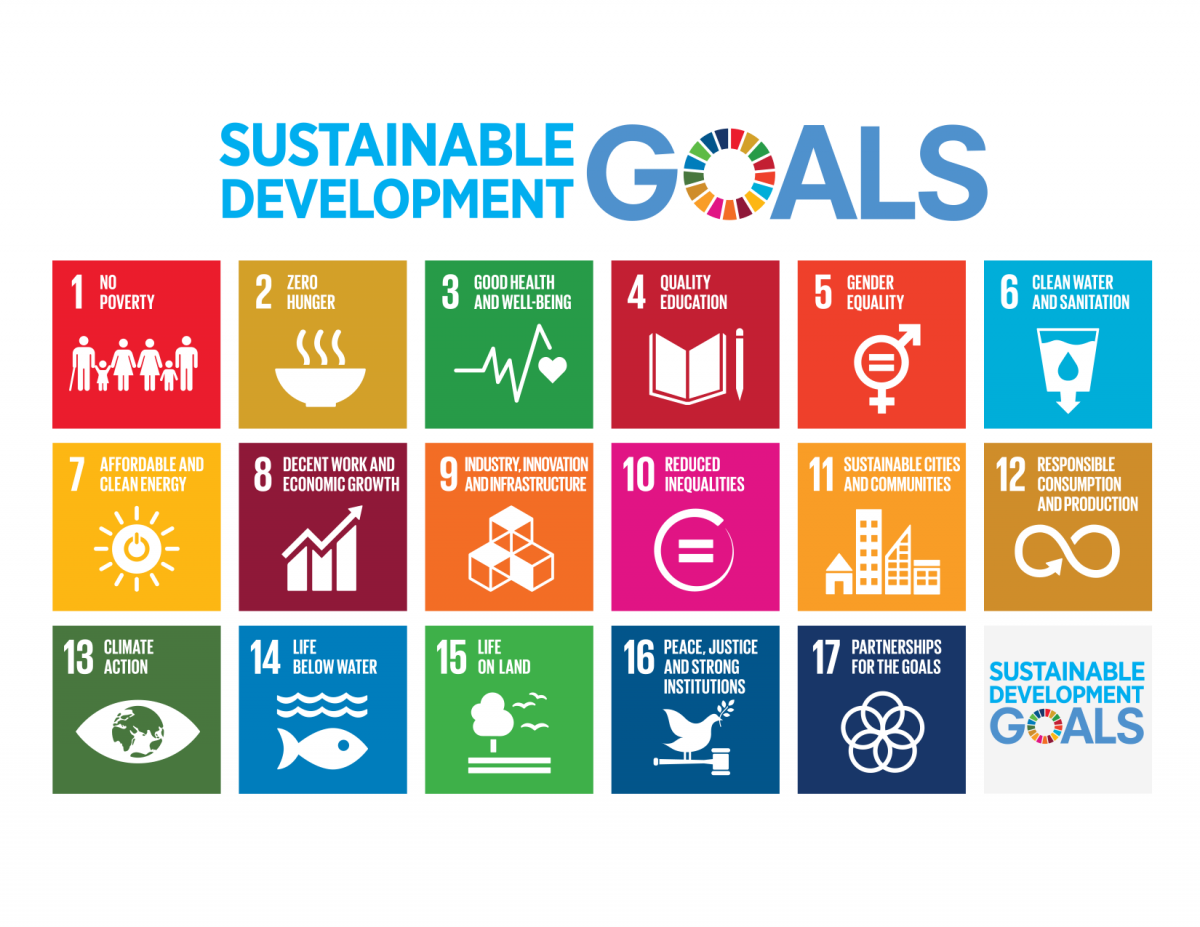 info-graphic of the sustainable development goals