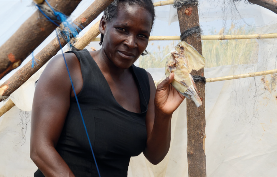Woman drying fish in a solar tent dryer in Barotse Floodplain