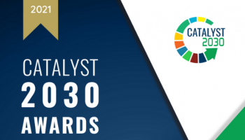 An image of the Catalyst 2030 Award.