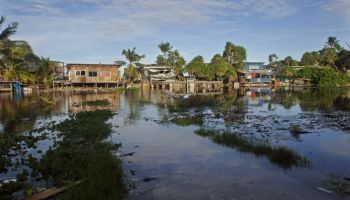 Squatter settlements in Tuvalu, built at the edge of a flooded stagnant tidal pool during a high spring tide.