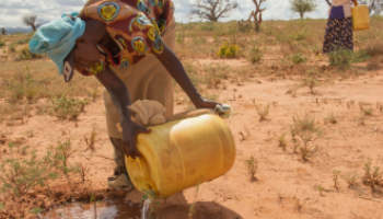 A woman pours water from a jug onto a plant