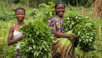 Les agricultrices