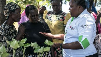 A worker from Caritas Homabay is showing local residents beans in Africa.