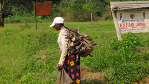 woman carrying wood in Ndian, Cameroon